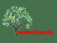 perfectloan2u.com